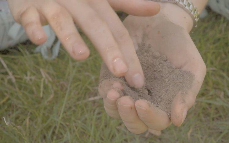 Bodenarten bestimmen