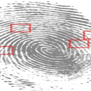 Vorschaubild Schutz vor Identitätsdiebstahl am Beispiel Phishing-Mail