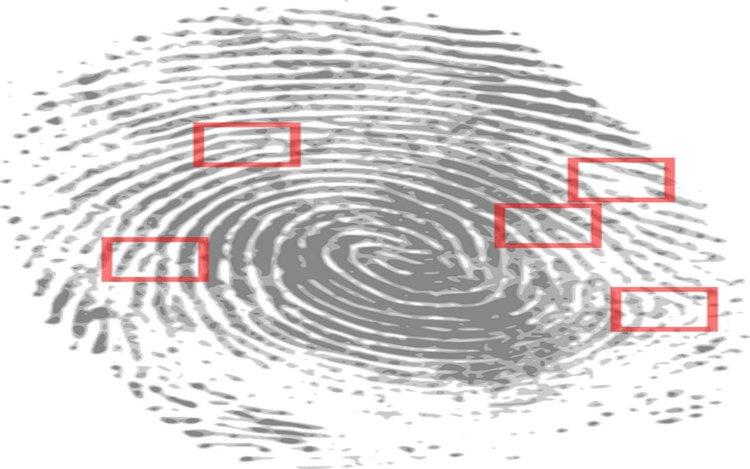 Schutz vor Identitätsdiebstahl am Beispiel Phishing-Mail