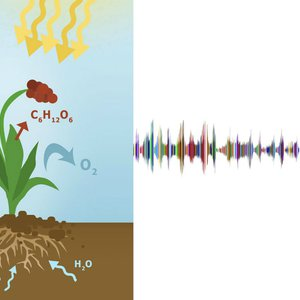 Vorschaubild Einen wissenschaftlichen Audio-Podcast planen und erstellen