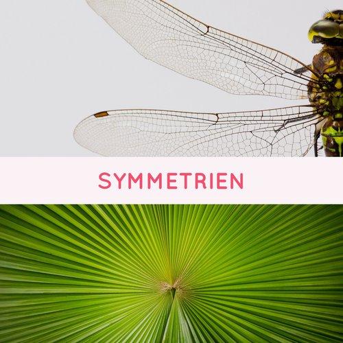 Symmetrien - GeoGebra zum selbstständigen Lernen kennenlernen