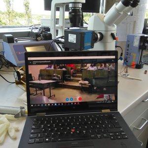 Vorschaubild Ring-a-Scientist.org