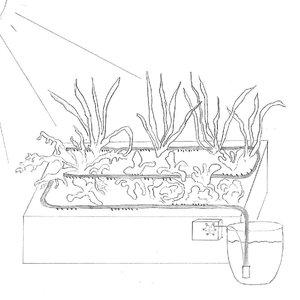 Vorschaubild Projekt Smartplant - Automatische Bewässerung mit Calliope
