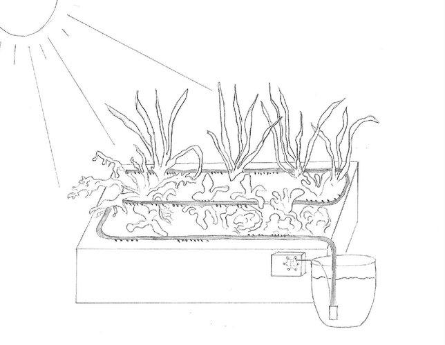 Projekt Smartplant - Automatische Bewässerung mit Calliope