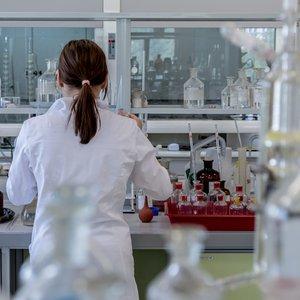 Vorschaubild Laborrallye