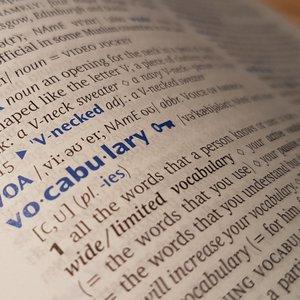 Vorschaubild Wortschatzlernen digital