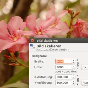 Vorschaubild Datenkompression am Beispiel Bild und Ton